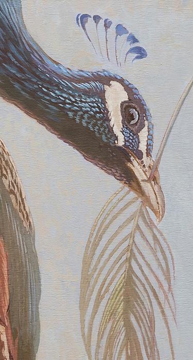 Pauw, detail van de nieuwe plafondschildering in de Driemondse theekoepel. <p> Foto; Eddy Wenting.