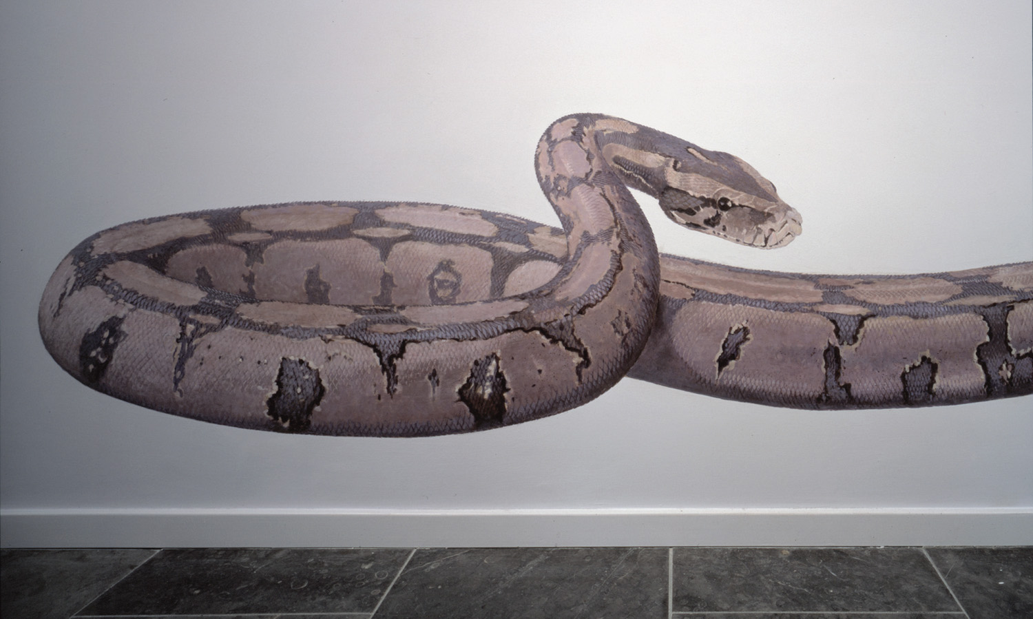 "Boa Constrictor Seven meters of Trompe l\'oeil mural painting in the entrance hall. <p> <span style=""color: #ffffff; font-size: 8pt;\"">plafondschildering – mural – painted ceiling painting</span>"