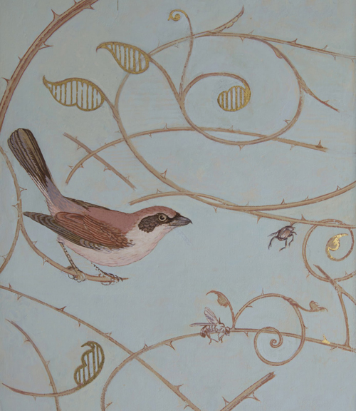Painted Shrikes and fragments of ornamental Rose branches