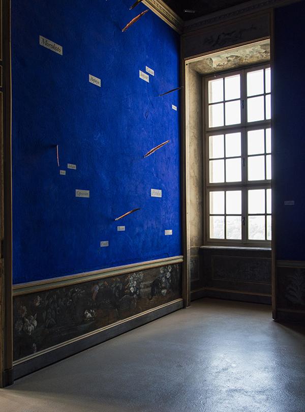 "Lothar Baumgarten,  \""Yurupari – Stanza di Rheinsberg"" (Rheinsberg Raum) 1984. <p> Cobalt pigment, papier strips, Ara feathers, tempera on wall. Castello di Rivoli Museo d'Arte Contemporanea, Rivoli, Torino, Italy"